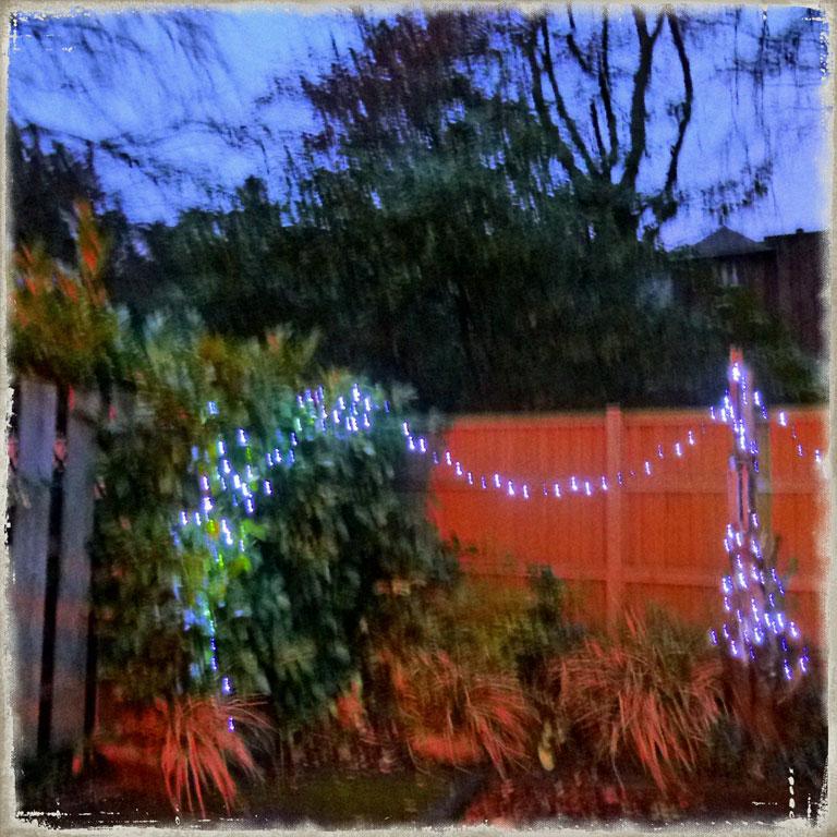 twinkle-web
